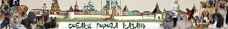 Форум «Собаки города Казань» и их Друзья